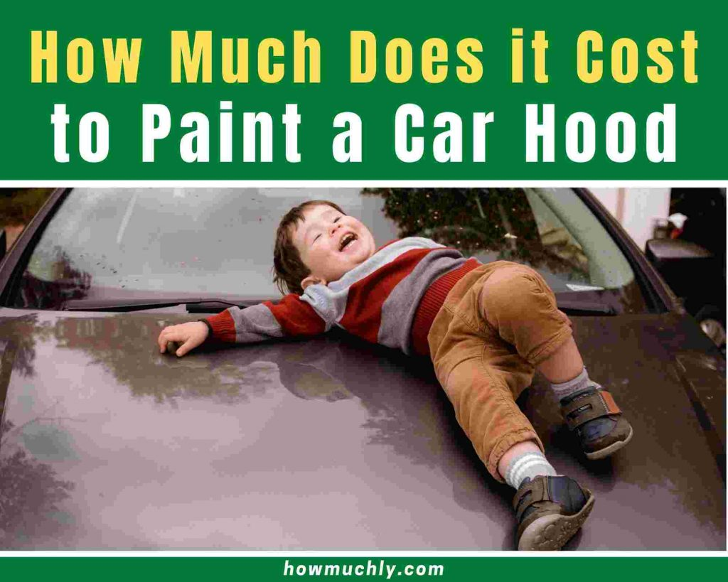 how much does it cost to paint a car hood